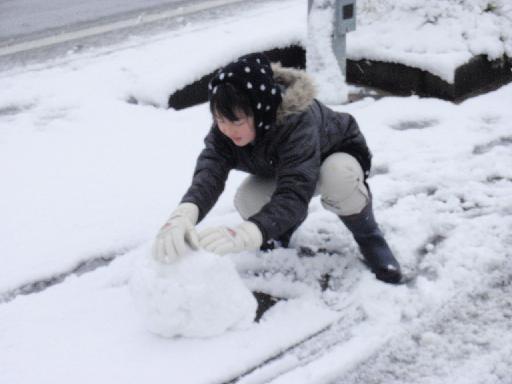 雪ダルマ製作中.jpg